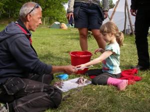 Fileande av nyupptagen strömming, ett av ledarbarnen hjälper till