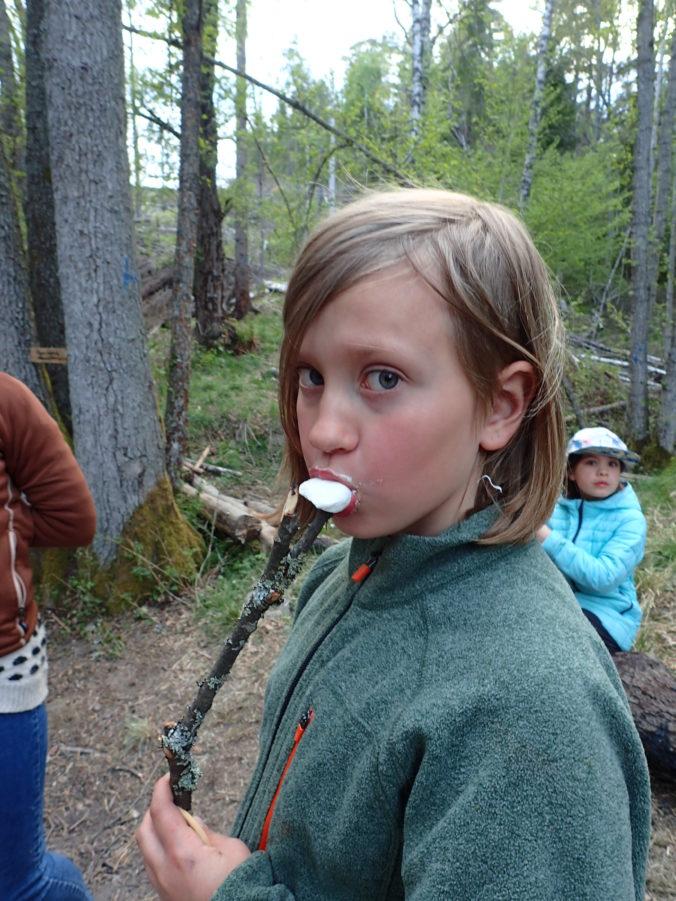 Stilstudie: Att äta Mashmallows